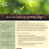 Science of Mind Foundations Class flyer with growing plants at the top