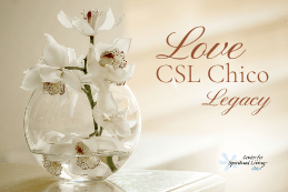 Image of Love CSL Chico Legacy fund bequest for CSL Chico image of white orchid in clear glass vase
